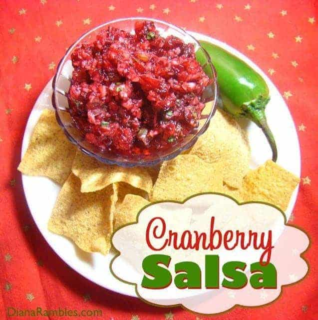 Cranberry Salsa Recipe - This easy to make recipe is sure to be a hit at all your holiday gatherings.