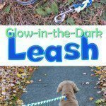 DIY Glow-in-the-Dark Dog Leash