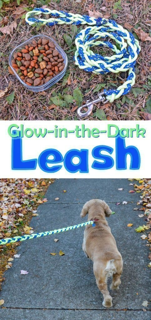 collage of glow-in-the-dark leash