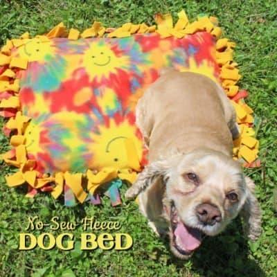 No-Sew Fleece Dog Bed