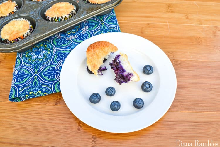 Weight Watchers Blueberry Angel Food Cake Recipe