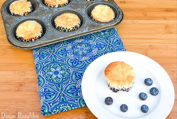 Blueberry pineapple angel food muffins weight watchers 1 point as i told you last week my friends and i get together each week for a tv viewing party a few of my friends are on weight watchers so they are keeping forumfinder Image collections