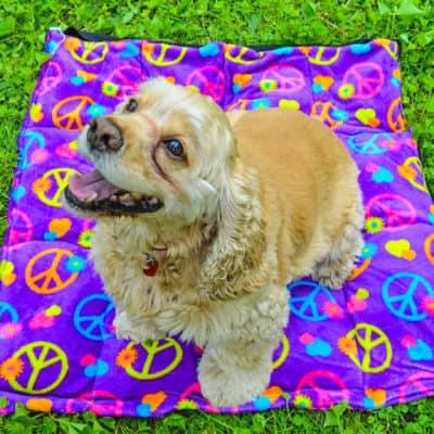 DIY Dog Cooling Mat