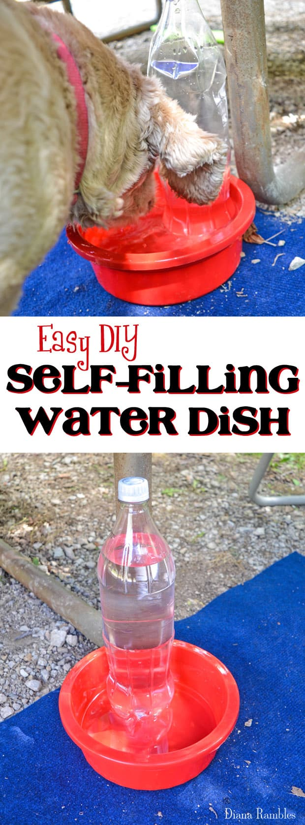 DIY Self Filling Water Dish for Your Pet - How to make an automatic dog or cat water dispenser. Keep dog cool with this dog dish.