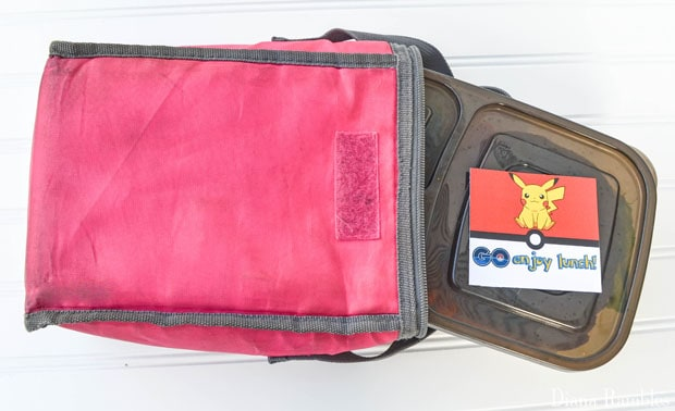Pokémon GO Bento Lunch Box
