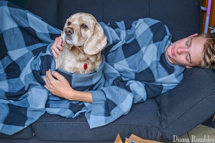 DIY Dog Snuggle Blanket