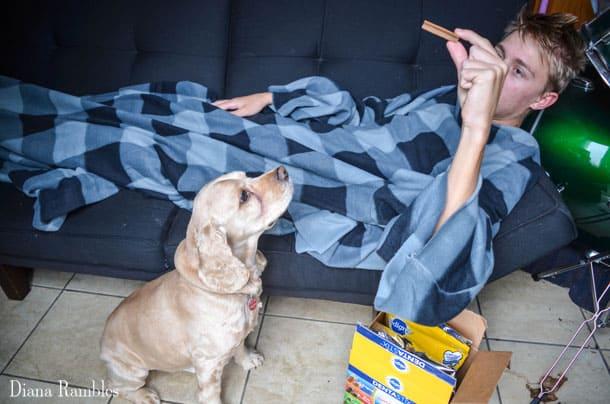dog-and-me-snuggle-blanket-pedigree