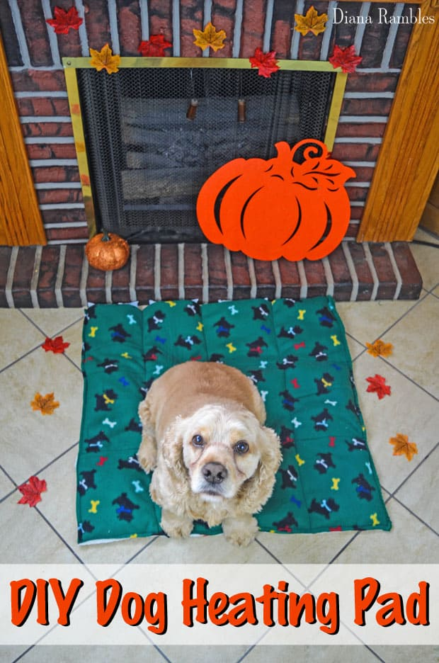 DIY Dog Heating Pad - Keep your pooch warm during the cold of the winter with this homemade heating bed.