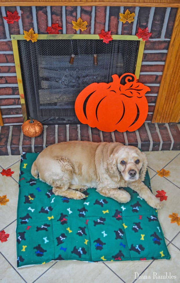 Diy Dog Heating Pad Made With Fleece Blanket