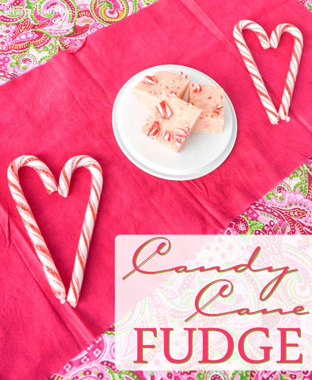 Microwave Candy Cane Fudge - Create this Candy Cane Fudge for your next holiday party. This tasty microwave fudge is rich and creamy and very easy to make.
