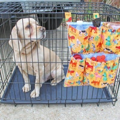 DIY Dog Crate Organizer