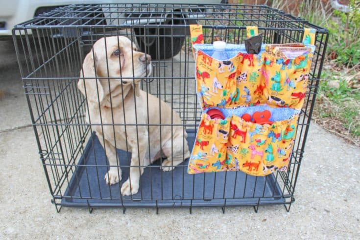 DIY Dog Crate Organizer