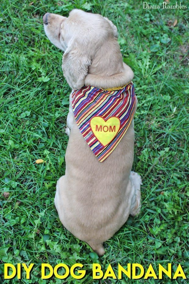 DIY Personalized Dog Bandana Sewing Tutorial - Looking for a gift for a dog lover? It's this DIY Embroidered Dog Collar Bandanna. This easy sewing tutorial includes a pattern for three sizes plus step by step instructions to create a one of a kind gift for your pet or pet loving friends.